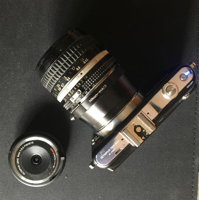 Nikon Nikkor 80-200 f 4 AI-S,montato su una moderna mirrorless micro 4EF112B90-1213-4012-A49F-D2144A602DBB